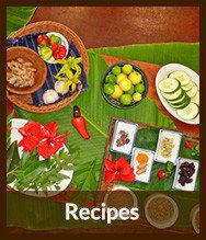 Thumbnails_recipes