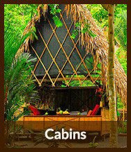 Thumbnails_cabins
